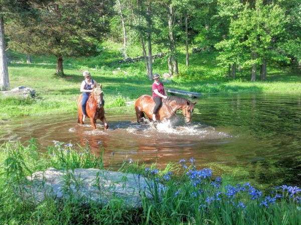 Horseback Riding Lesson in CT.